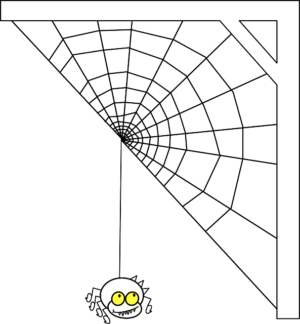 spiderweb-29225_640