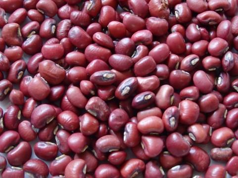 赤い小豆です。