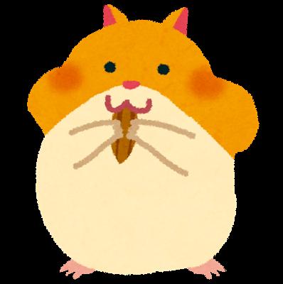 animal_hamster