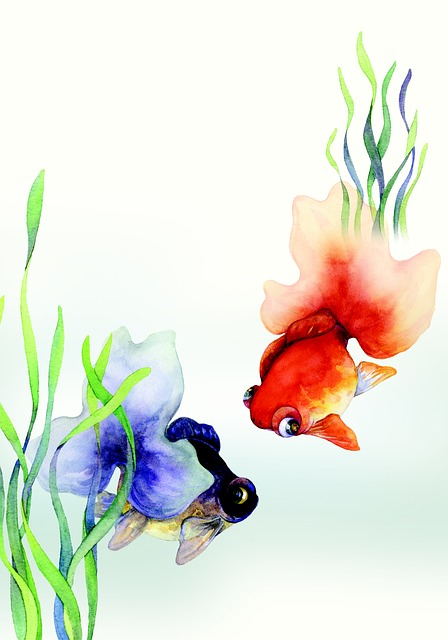 中国風の金魚のイラスト