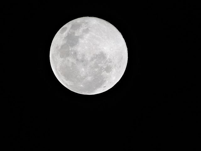 お月見の様子です