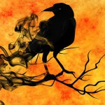 raven-988229_640