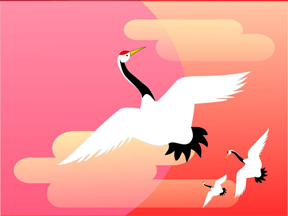 crane-641837_960_720