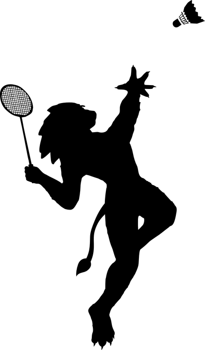 badminton-156463_960_720